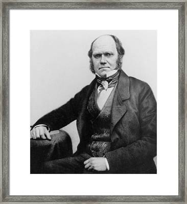 Portrait Of Charles Darwin Framed Print by English Photographer