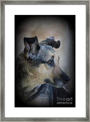 Portrait Of Kylie Framed Print