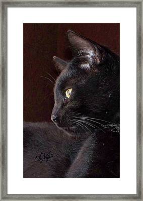 Portrait Of My Boy Charlie Framed Print