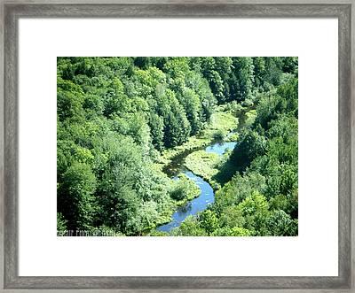 Portrait Of Porcupine River Framed Print by Meghan Ziegel