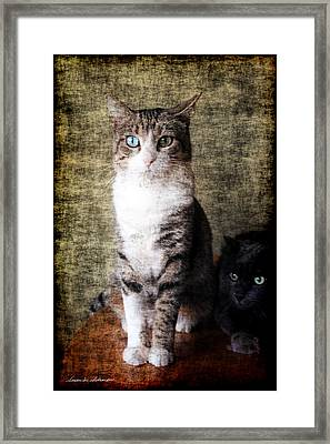 Portrait Of Two Cats Framed Print