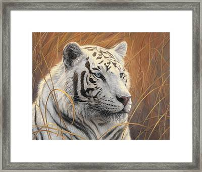 Portrait White Tiger 2 Framed Print by Lucie Bilodeau