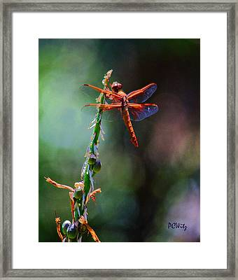 Positive Forces Framed Print