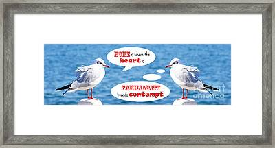 Positive-thinking And Negative-thinking Seagull Twins 3 Framed Print by Beverly Claire Kaiya