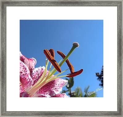 Possibilities 2 Framed Print