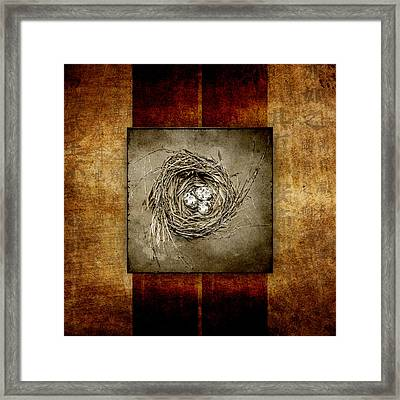 Possibilities Framed Print by Carol Leigh