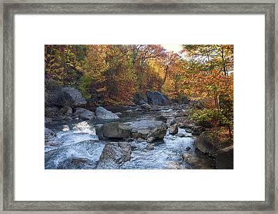 Possum Creek Framed Print