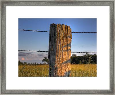 Post And Barb Wire Framed Print