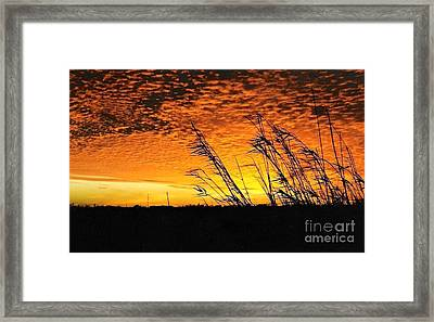 Post Hurricane Rita At Dockside In Beaumont Texas Usa Framed Print by Michael Hoard