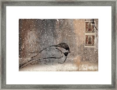 Postcard Chickadee In The Snow Framed Print by Carol Leigh
