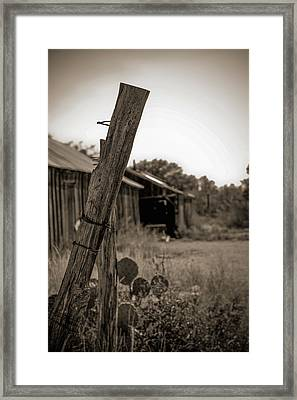 Posted In Time Framed Print by Amber Kresge