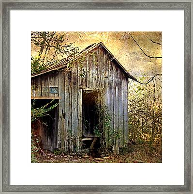 Posted No Trespassing Framed Print by Patricia Januszkiewicz