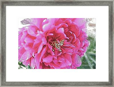 Poster Flower Framed Print by Alison Tomich