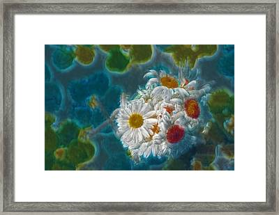 Pot Of Daisies 02 - S11bl01 Framed Print by Variance Collections