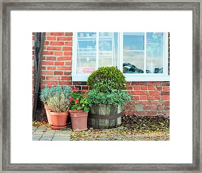 Pot Plants Framed Print by Tom Gowanlock