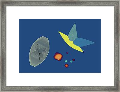 Potassium Bitartrate Crystals Framed Print by Steve Lowry