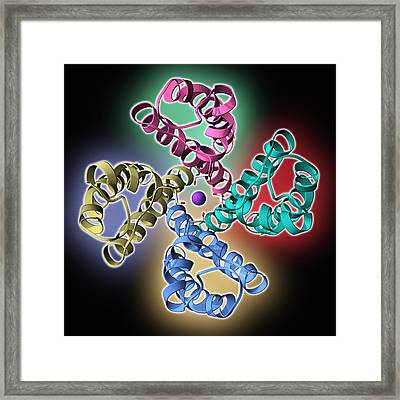 Potassium Channel Molecule Framed Print