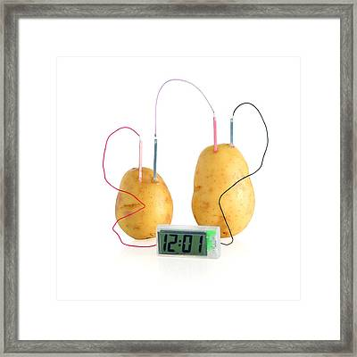 Potato Clock Framed Print by Science Photo Library
