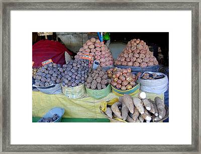 Potato Rainbow Framed Print by Lew Davis