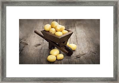 Potatos In A Miniature Wheelbarrow Framed Print