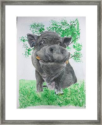 Potbellied Pig Pet Portraits Watercolor Memorial Made To Order 5x7 Inch Framed Print