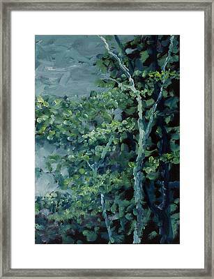 Potlatch 05 Framed Print by Paul Illian