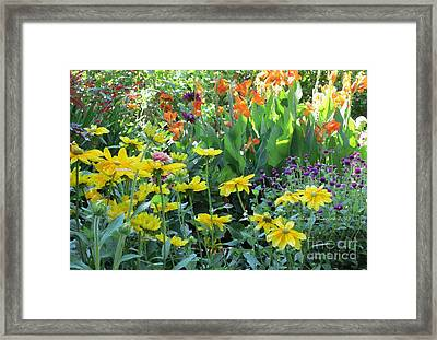 Framed Print featuring the photograph Potpourri   by Kathie Chicoine