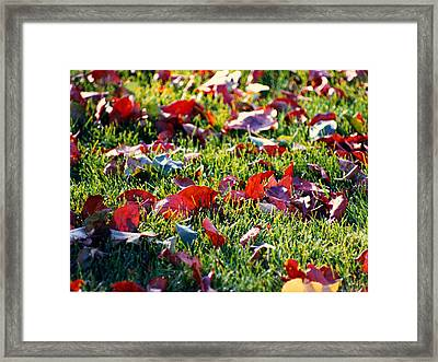 Framed Print featuring the digital art Potpourri by R Thomas Brass