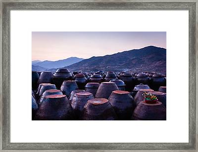 Pots Of Plum Framed Print