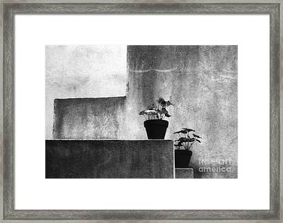 Framed Print featuring the photograph Pots by Steven Macanka