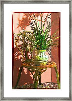 Potted Plant In Chair No 3 Framed Print by Ginny Schmidt
