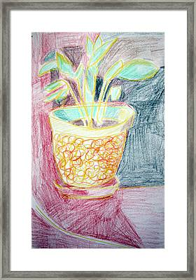Potted Plant Still Life With Drapery Framed Print