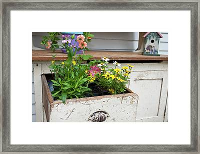 Potting Bench With Flowers In Spring Framed Print by Richard and Susan Day