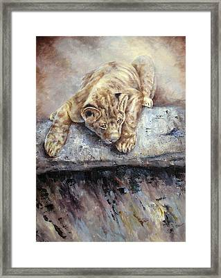 Framed Print featuring the painting Pounce by Mary McCullah