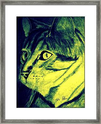 Pound Cat Tinted Framed Print