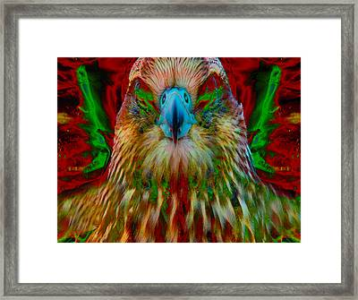 Power Hawk 1 Framed Print by Colleen Cannon