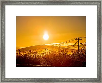 Power Lines And Trees In The Frozen Framed Print