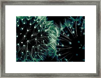 Power Of Nature  Framed Print by The Art Of Marilyn Ridoutt-Greene
