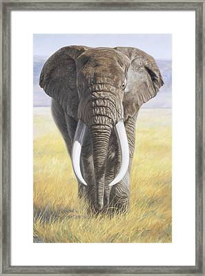 Power Of Nature Framed Print by Lucie Bilodeau