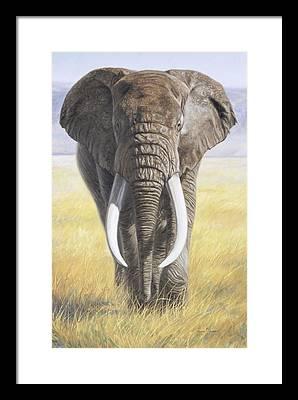 Ngorongoro Conservation Area Framed Prints