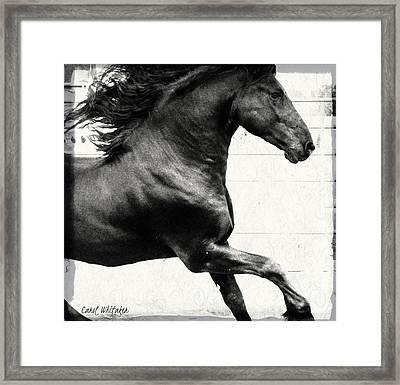 Power Of Stride Framed Print by Royal Grove Fine Art