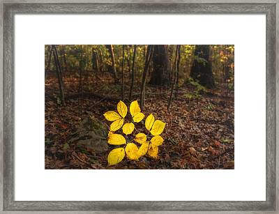 Power Of Illumination Framed Print by Sylvia J Zarco