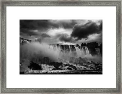 Powerful Splendor Framed Print