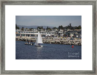 pr 193 - The Sailboat Framed Print by Chris Berry