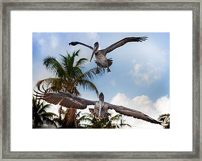 Practice Makes Perfect Framed Print by Karen Wiles