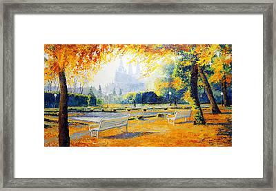 Prague Autumn In The Kralovska Zahrada Framed Print by Yuriy Shevchuk