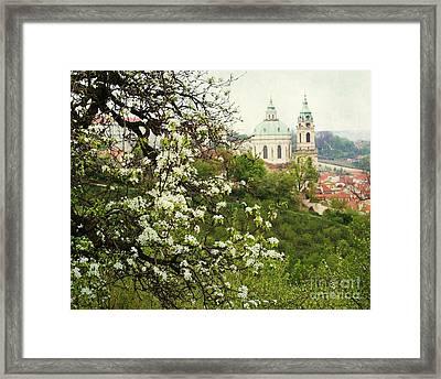 Prague In Bloom II Framed Print