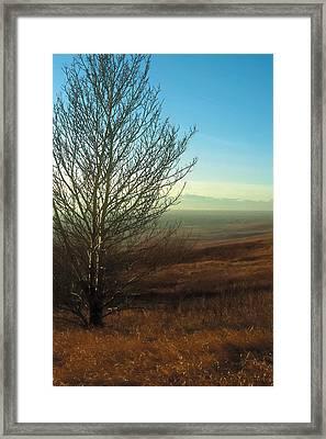 Prairie Autumn 5 Framed Print by Terry Reynoldson