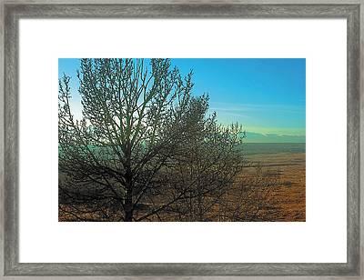 Prairie Autumn 7 Framed Print by Terry Reynoldson