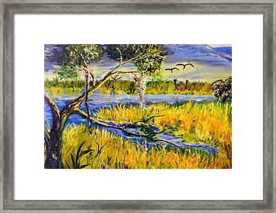 Prairie Framed Print by Christy Usilton